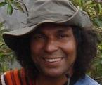 ilahinoor healing energy founder